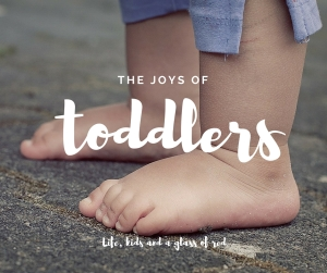 the joys of toddlers